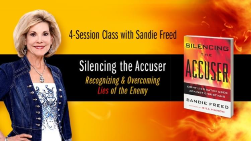 Sandi Freed standing with her book Silencing the Accuser
